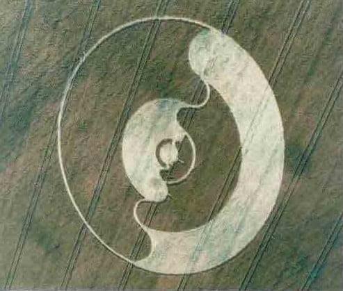 crop_circle31