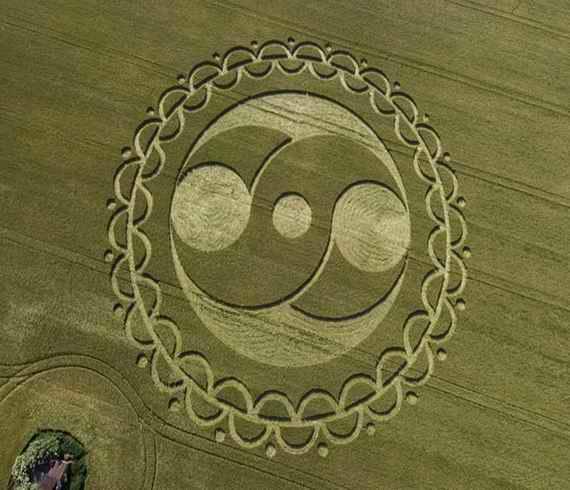 crop_circle_080620_wiltshire_furze_knoll_morgans