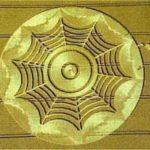 crop_circle47
