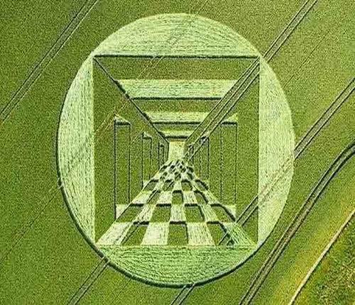 crop_circle48